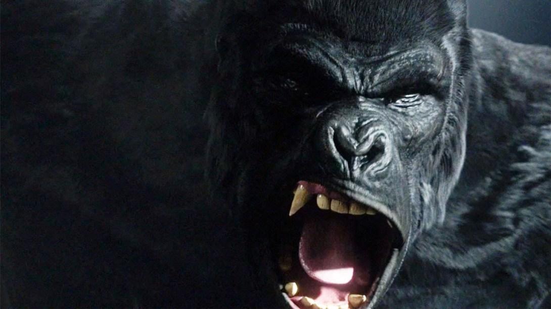 dccomicsnews_gorillagrodd