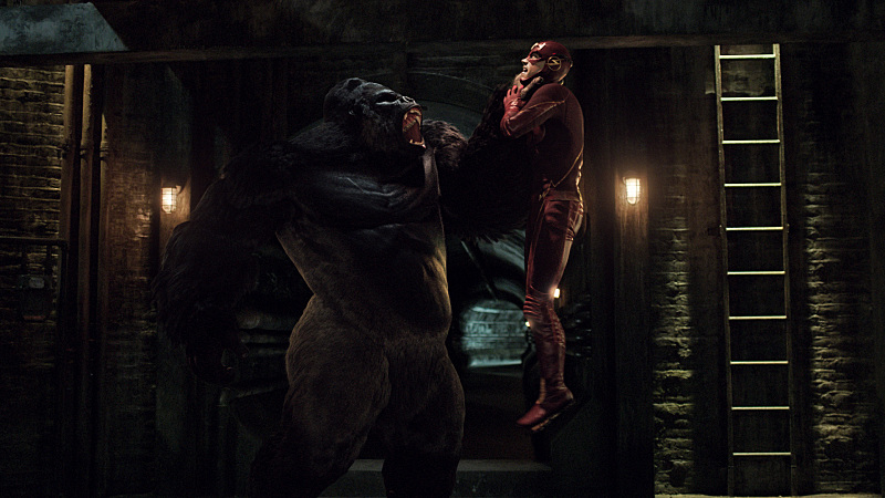 """The Flash -- """"Grodd Lives"""" -- Image FLA121_SG_049.020.001 -- Pictured (L-R): Grodd and Grant Gustin as Barry Allen / The Flash -- Photo: The CW -- © 2015 The CW Network, LLC. All rights reserved."""