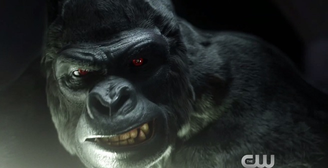 Gorilla Grodd - The Flash