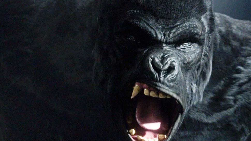 The Flash King Shark Gorilla Grodd dc comics news