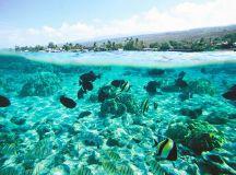 Top 10 Reasons to Visit the Big Island | Hawaii.com