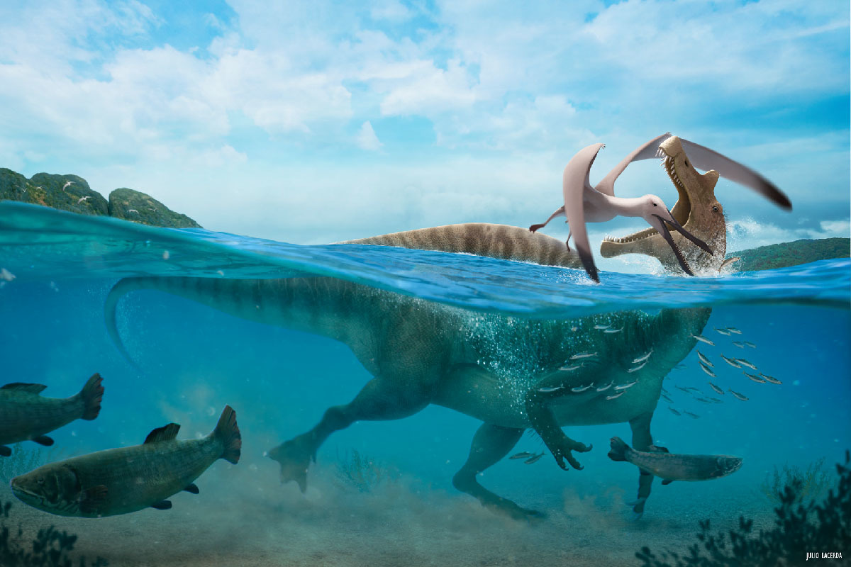 Resultado de imagem para Brazilian sail-backed dinosaur