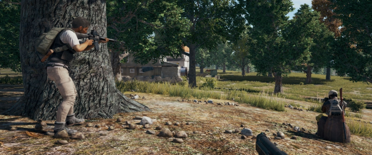 Chicken Dinner Pubg Wallpaper Pubg And Nvidia Introduce Shadowplay Highlights Shacknews