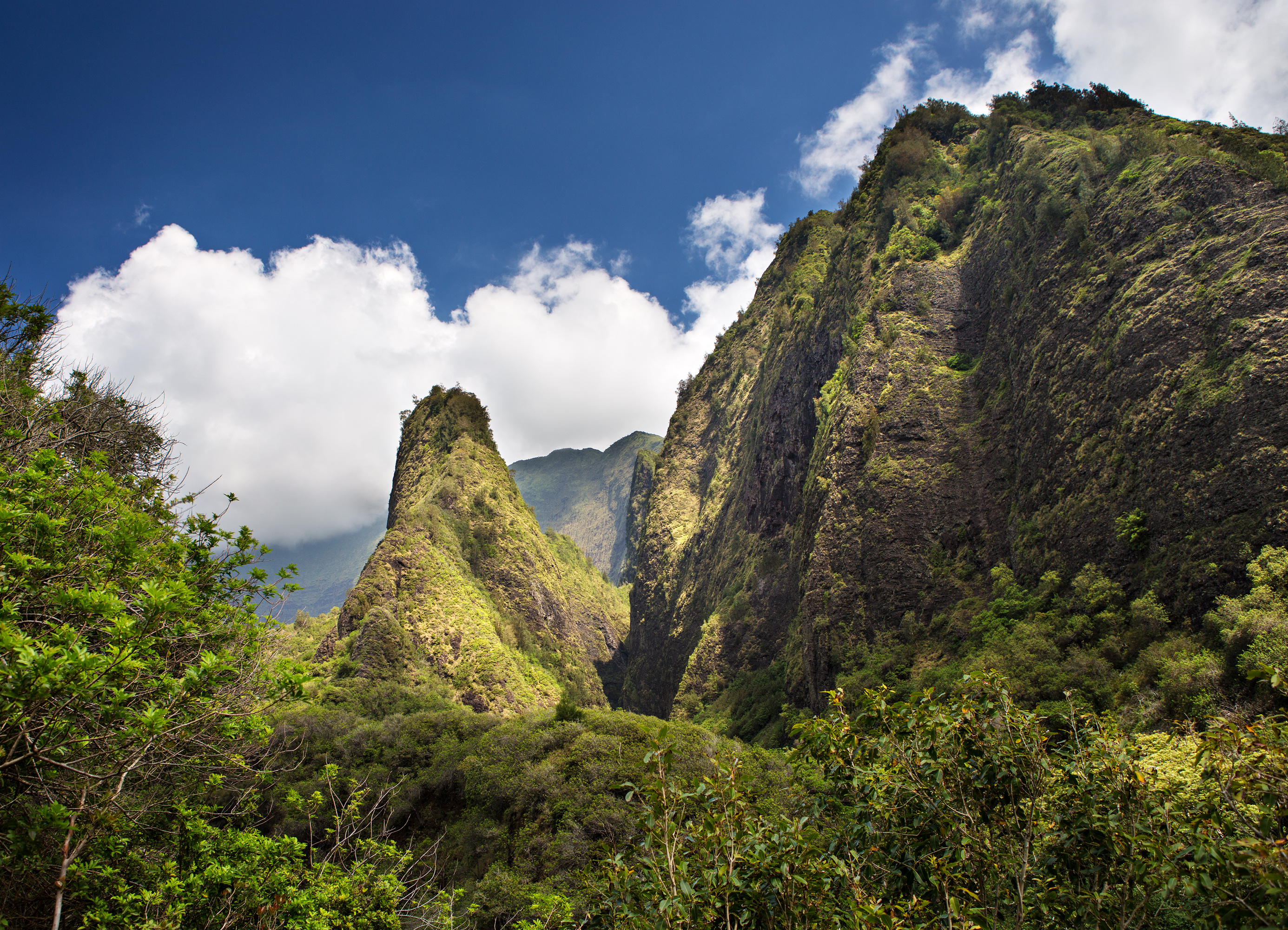 Visit Iao Valley Maui Hawaii Skyline Eco Adventures