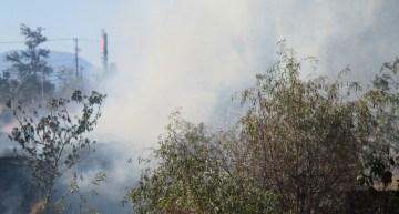 Los Bomberos sofocan un incendio de pastizal