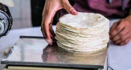 No hay justificación para subir el precio de la tortilla: Profeco