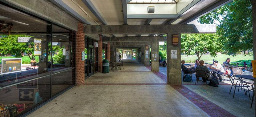 Skidmore College  Overview  Plexusscom