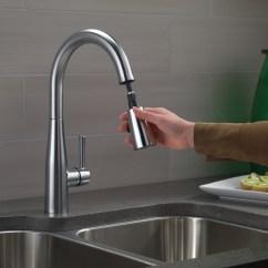 Spray Head Kitchen Faucet Costco Mat Bath4all - Delta 9113-bl-dst Essa Pull-down ...