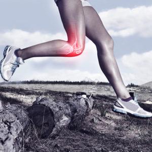 Benefits of Running – joint health knee