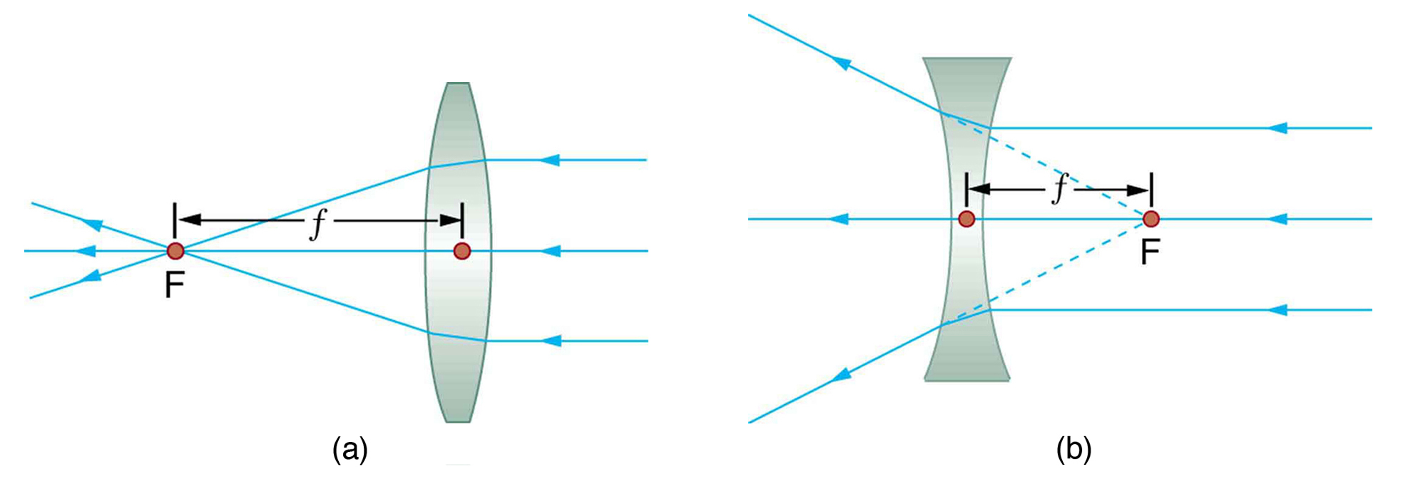 hight resolution of figure a shows three parallel rays incident on the right side of a convex