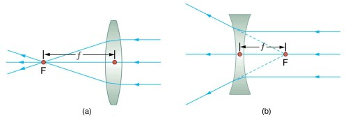 small resolution of figure a shows three parallel rays incident on the right side of a convex