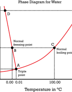 The phase diagram of water is special because solid liquid line has  also for chemistry non majors rh coursesmenlearning