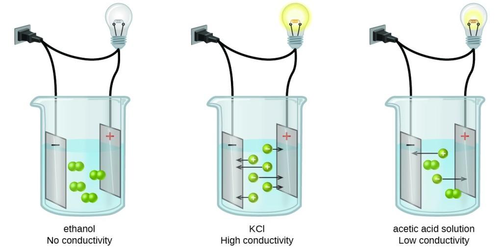 Electrolytes   Chemistry for Majors