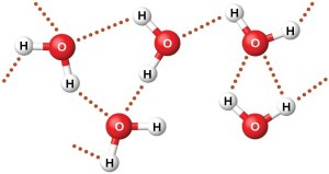 Intermolecular Forces | Chemistry for Majors