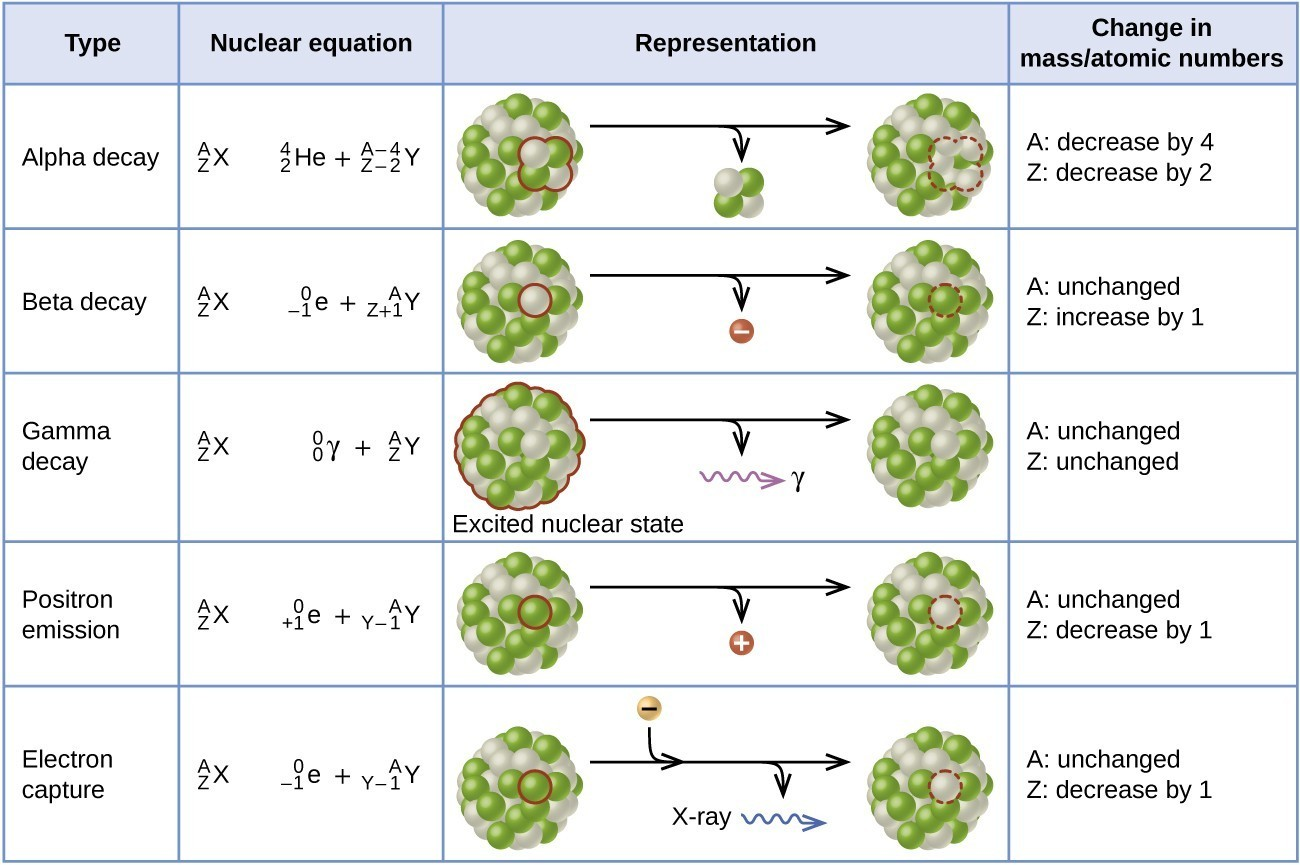 Related Keywords Amp Suggestions For Nuclear Decay