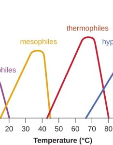 graph with temperature  on the  axis and growth rate of also microbial microbiology rh coursesmenlearning