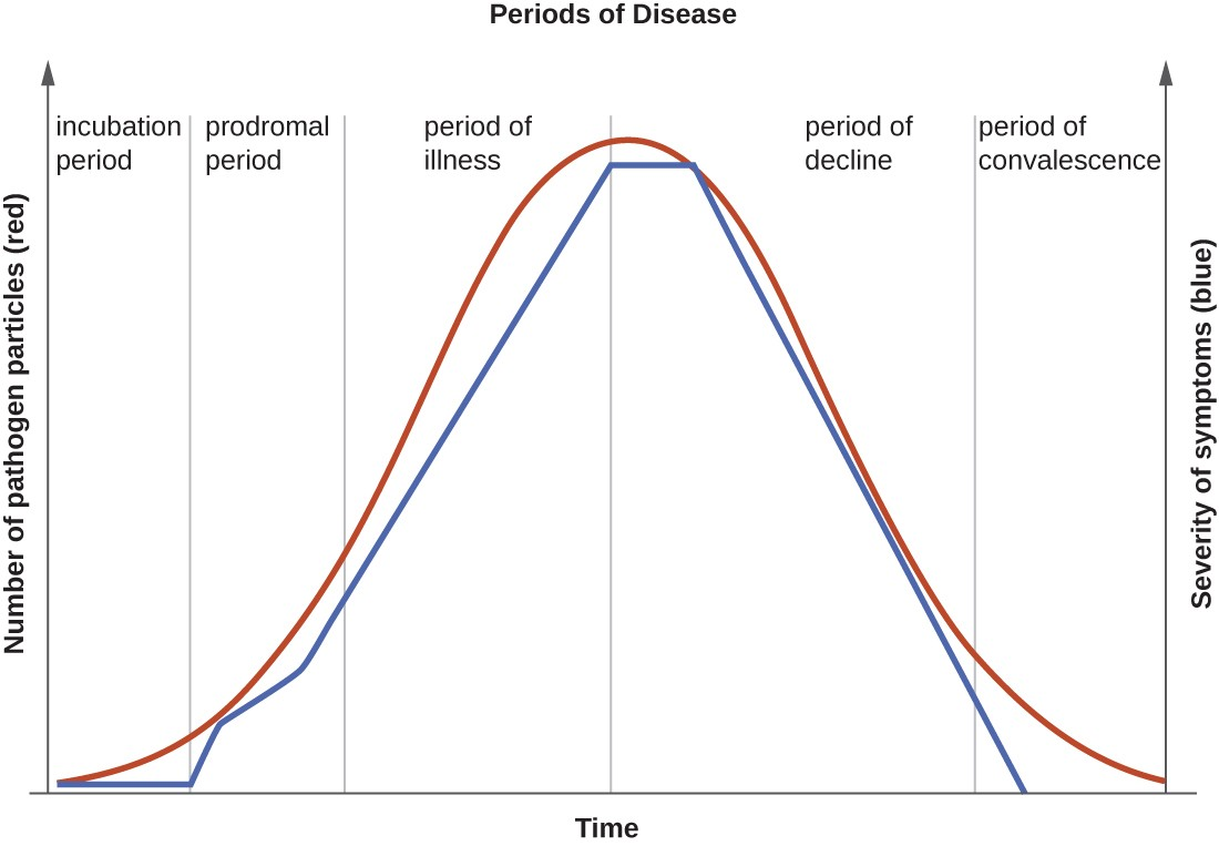 hight resolution of a graph titled periods of disease with time on the x axis and two