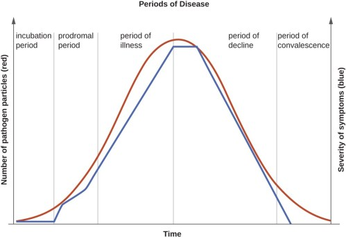 small resolution of a graph titled periods of disease with time on the x axis and two