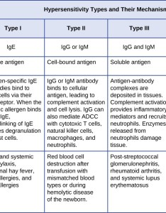 Table summarizing four types of hypersensitivities type  uses immune reactant ige and  soluble also microbiology rh coursesmenlearning