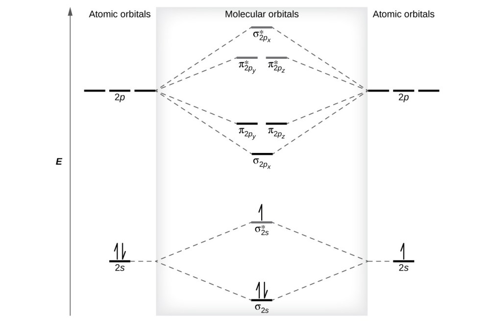 medium resolution of a diagram is shown that has an upward facing vertical arrow running along the left figure 9 this is the molecular orbital diagram for the homonuclear