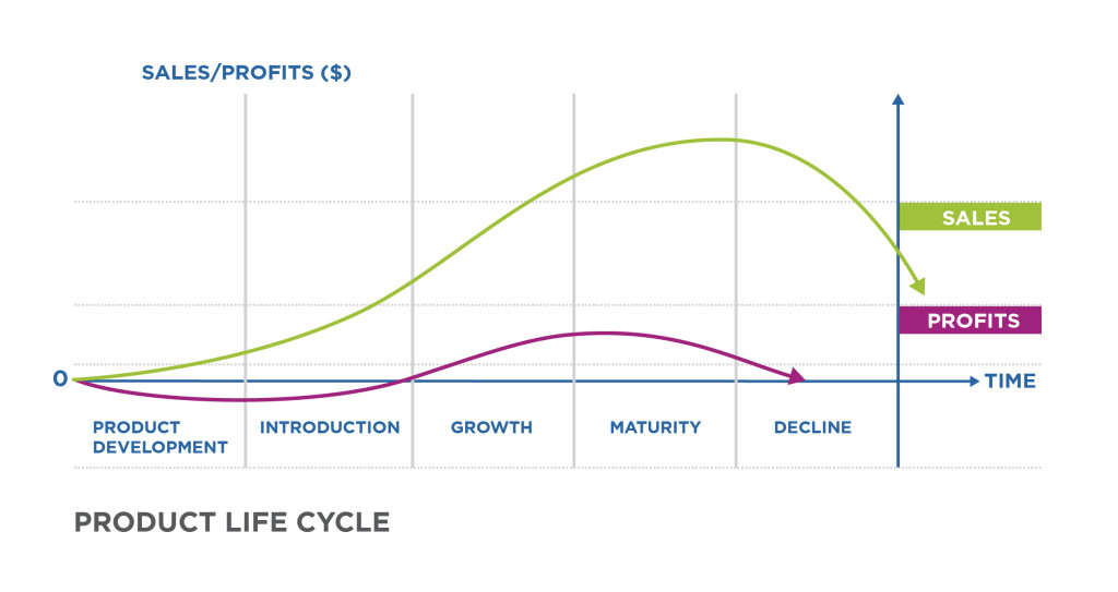 Beginning Stage Life Cycle