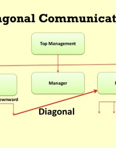 Graphic depicting diagonal communication in business this example  line of is also channels flows networks introduction to rh coursesmenlearning