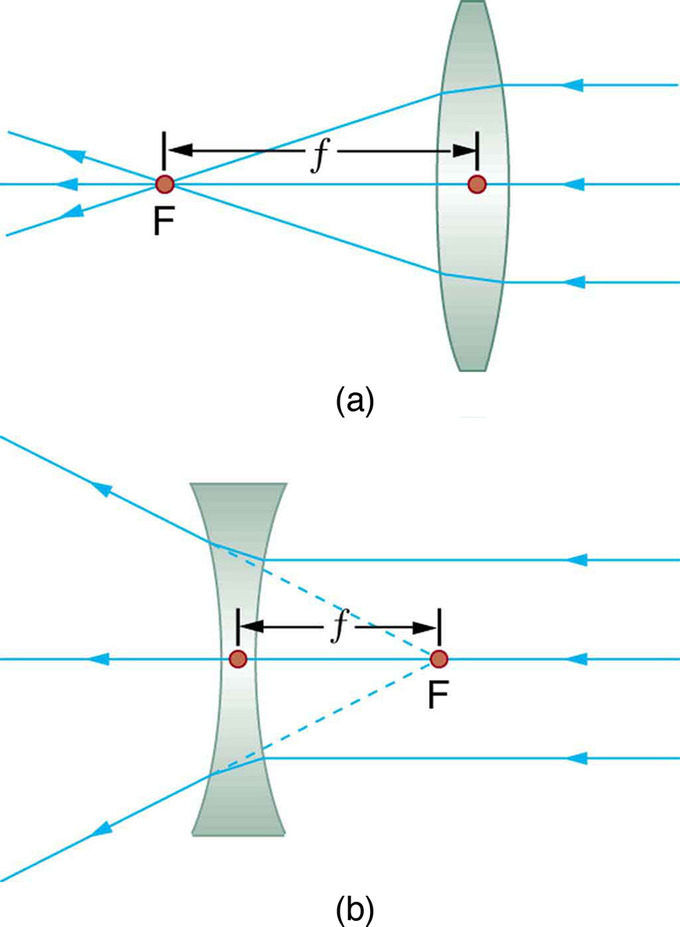 lenses for ray diagram physics stereo mini jack to xlr wiring boundless image