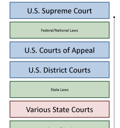 chart showing how courts are structure vertically from local at the bottom to the supreme court [ 1468 x 2392 Pixel ]