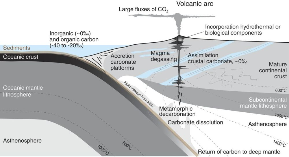 medium resolution of schematic diagram to show the possible sources of carbon in a subduction zone volcanic system and the processes that might fractionate carbon isotopes