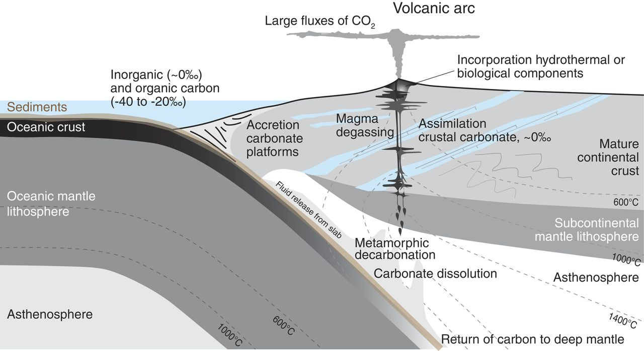 hight resolution of schematic diagram to show the possible sources of carbon in a subduction zone volcanic system and the processes that might fractionate carbon isotopes