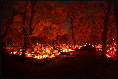 Dia de los Muertos candles in a graveyard.