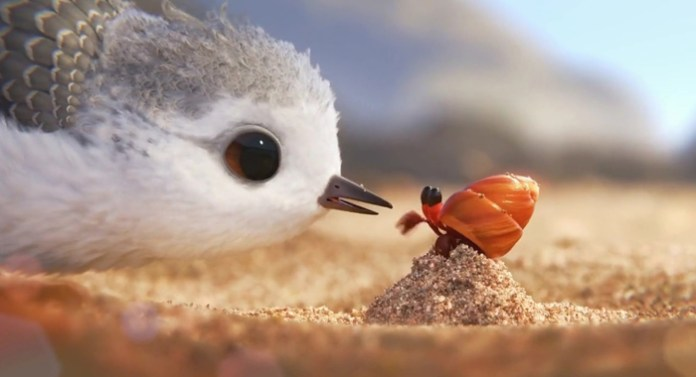 Piper-Animated-Short Oscar 2017 | Apostas Finais