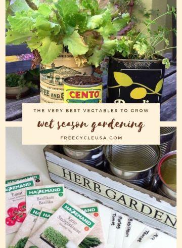 Wet Season Gardening