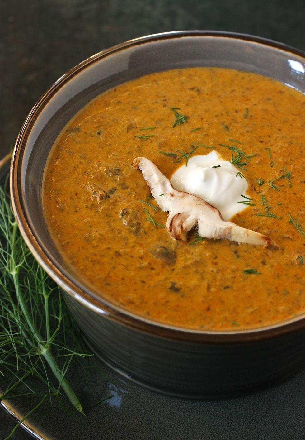 Hungarian Mushroom Soup in a bowl