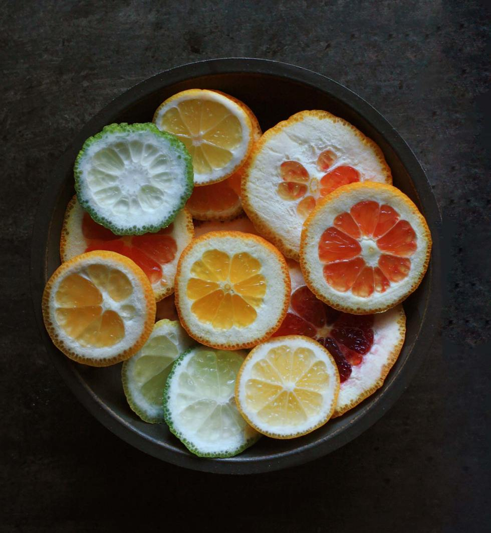 Winter Citrus Salad with Burrata   SoupAddict.com