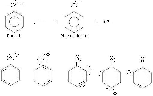 Phenol is acidic due to resonance stabilization of its