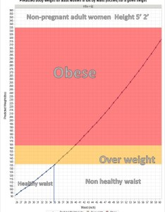 Free downloadable custom healthy waist size chart for both adult male and female also achieve fitness goals by maintaining with maximum rh issuewire