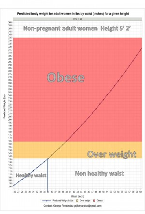 Achieve Fitness Goals by Maintaining Healthy Waist Size ...