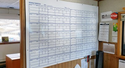 A daily scheduling white board in the dispatch office of Juneau Tours and Whale Watch is blank for the pre-season on March 13, 2020.