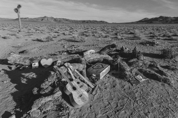 Por cierto, The Josua Tree que aparece en la portada de atrás del álbum está solamente a 27 millas al centro del desierto desde la parada más cercana de un autobús. Foto: cortesía Steve Hymon.