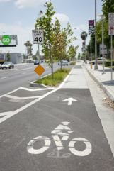 Temple City Cycle Track, shown in purple on the map. Photo credit: Serena Grace
