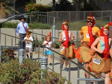 The turkeys' archenemy: the pilgrim!