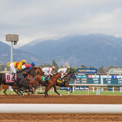 Horse racing at Santa Anita Park. Photos: Steve Hymon/Metro