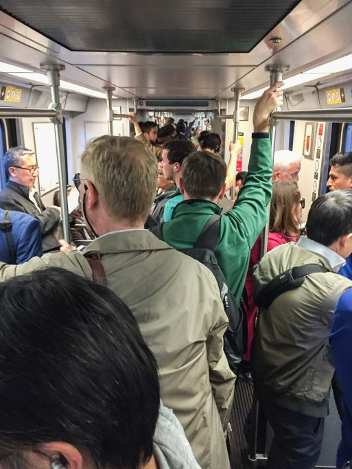 The Expo Line recently. Photo by Joe Lemon/Metro.