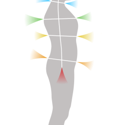 front and rear chakras diagram [ 670 x 1263 Pixel ]