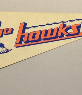 1978 San Diego Hawks Team Pennant