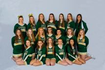 Pennfield - Team Home Panthers Sports