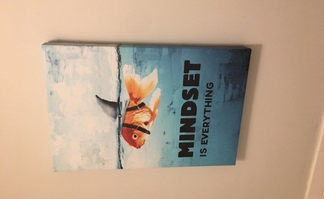 Mindset Is Everything Fish Artwork Prints Motivational Mindset Quote Ikonick