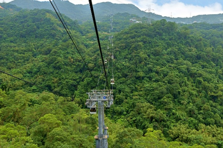 View of the Maokong Gondola cable car above a hilly and lush landscape in Taipei, Taiwan.