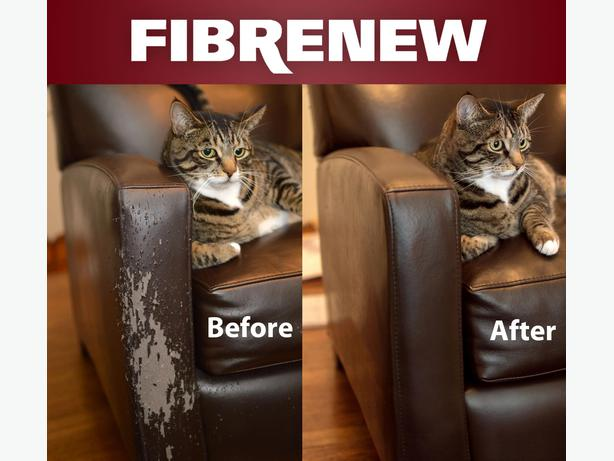 how to repair a leather sofa from cat scratches dfs 2 seater fibrenew - we fix kitty victoria city,